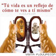 Tener confianza en nosotros mismo es de vital importancia para alcanzar cualquier meta. Visita: http://floulife.com/como-subir-la-autoestima/