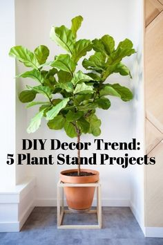 DIY Decor Trend: Elevated Plant Stands