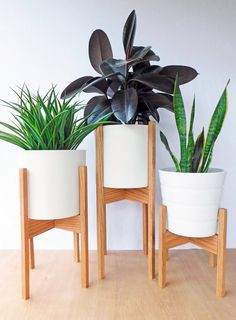 Set of Three, Mid Century Modern Plant Stands, Square Legs, Oak Wood Modern Plant Stand, Diy Plant Stand, Plant Stands, House Plants Decor, Retro Home Decor, Handmade Home, Modern Interior Design, Diy Interior, Indoor Plants