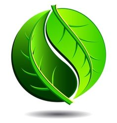 Green logo - yin yang leaf symbol vector