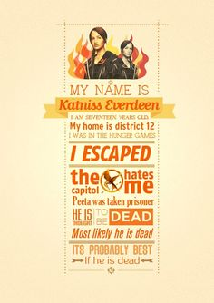 Mockingjay ( there is no district 12)