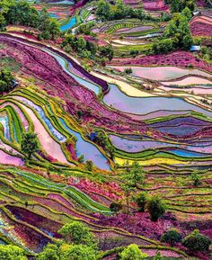 """unboxingearth: """" Yuanyang rice terraces, Yunnan, China """""""