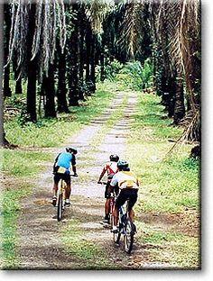 Mountain Biking in Costa Rica