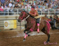 Diana Volk kK Relay Races, First Nations, Horse Racing, Painted Horses, American Life, Native Americans, Ponies, Artist, Animals
