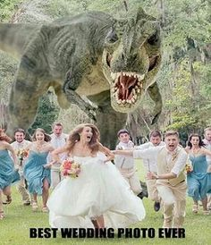 I wanna do this for my wedding