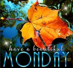 Image result for monday images fall