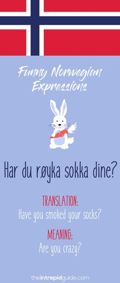 49 Hilarious Norwegian Idioms and Sayings That Will Make You Giggle Norwegian Words, Norway Language, Beautiful Norway, Study Quotes, Proverbs Quotes, World Languages, Norway Travel, Idioms, Learn English