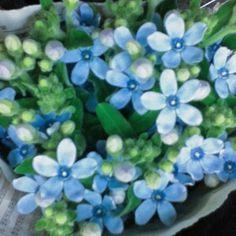 によるInstagramの写真ficklekitten - I'm just attracted to the blue.