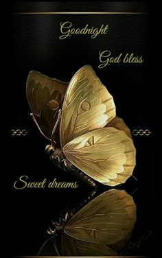 Wall Art HD Print Black and Gold Butterfly Poster Good Night Love Images, Good Night Beautiful, Cute Good Night, Good Night Sweet Dreams, Good Night Image, Good Morning Good Night, Good Night Greetings, Good Night Messages, Good Night Wishes