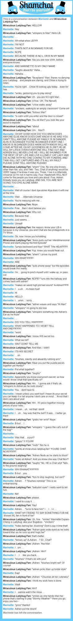 A conversation between Miraculous Ladybug Fan and Marinette