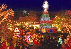 Branson, Mo., boasts a tree like no other. It is five stories tall, built of steel and LED lights, and plays Christmas carols. The tree was illuminated on Nov. 4 and will remain up at the Silver Dollar City theme park in Branson until Dec. 30.
