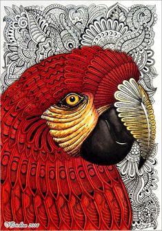 Doodle Art Drawing, Zentangle Drawings, Art Drawings Sketches, Sharpie Zeichnungen, Tier Doodles, Bird Doodle, Doodle Flowers, Parrot Drawing, Dibujos Zentangle Art