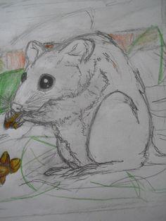 mouse under the henhouse ...  real ^^ by KianaWolf.deviantart.com on @deviantART