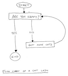 Flow chart of a cat lady