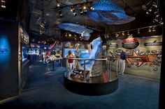 Ripley's Aquarium Myrtle Beach: Myrtle Beach Attractions Review - 10Best Experts and Tourist Reviews