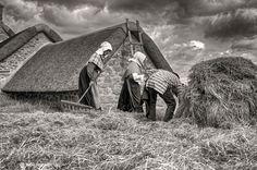 Bretagne ~ Ménéham : Ramassage et Stockage du Foin (Finistère)