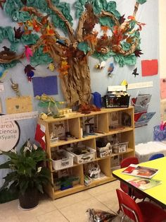 Lets explore nature! stem habitats, each section of shelving has information for children about the biome of each selected mammal, also allows for Science Area Preschool, Preschool Rooms, Preschool Centers, Kindergarten Science, Science For Kids, Learning Centers, Preschool Activities, Science Centers, Science Table