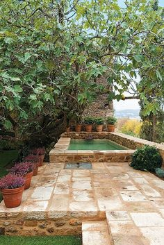 Everybody likes luxury pool styles, aren't they? Here are some leading checklist of deluxe pool photo for your inspiration. These wonderful swimming pool design suggestions will change your yard into an exterior sanctuary. Small Backyard Pools, Small Pools, Outdoor Pool, Outdoor Gardens, Diy Swimming Pool, Swimming Pool Designs, Natural Swimming Pools, Diy Pool, Indoor Swimming