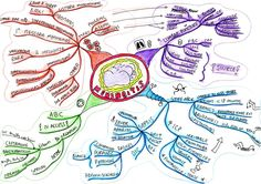 Medical student revision notes and mind maps.  Find revision notes and mind maps to help prepare for medical school finals.