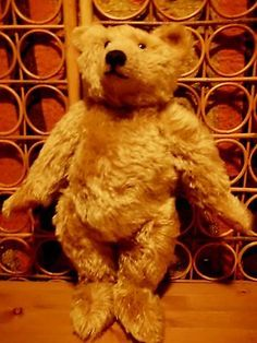 0216d8a55 76 best steiff bear and animals images on Pinterest