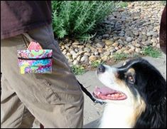 Just a quick and easy project for our four footed friends. From the front: From the back: From the back showing how you can als. Dog Treat Pouch, Treat Bags, Poop Bag Holder Diy, Homemade Dog Toys, Pet Parade, Dog Clothes Patterns, Sewing Patterns, Dog Treats, Dog Life
