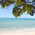 69 things to do in Kailua-Kona