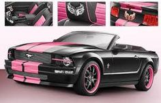 Black and pink mustang