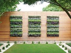 Vertical Garden gutter | Rain Gutter Vertical Garden. Image Source: Today's Garden Centre