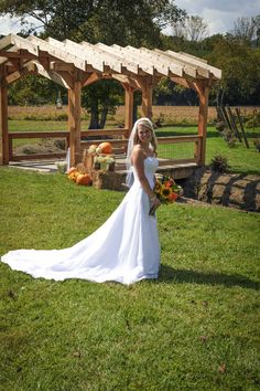 Souther Williams Winery Outdoor Wedding Venues, Blue Ridge Mountains, Be Perfect, Vineyard, Wedding Dresses, Outdoor Wedding Locations, Bride Dresses, Bridal Gowns, Vine Yard