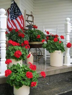 Great for summer porch! My favorite summer potted plant - red geraniums! Looks like your touch Di! Summer Front Porches, Summer Porch, Summer Fun, Gerbera, Farmhouse Front Porches, Country Porches, Red Geraniums, Potted Geraniums, Potted Plants