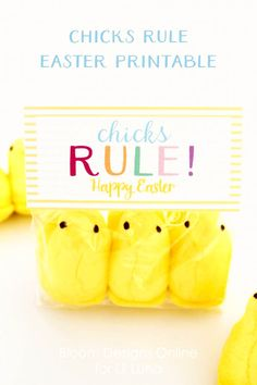 chicks-rule-1 Free printable.  Cute for girls soccer or soft ball team or brownies and Girl Scouts