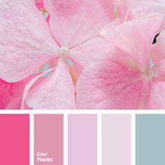 Color Palette  #3820