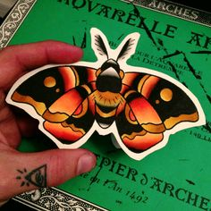 Moth Tattoo. Very valid possibility.