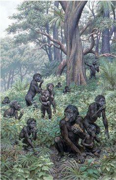 history of homo erectus essay History of discovery: unlike every other human species, homo sapiens does not have a true type specimen in other words, there is not a particular homo sapiens.