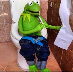Kermit bout that life