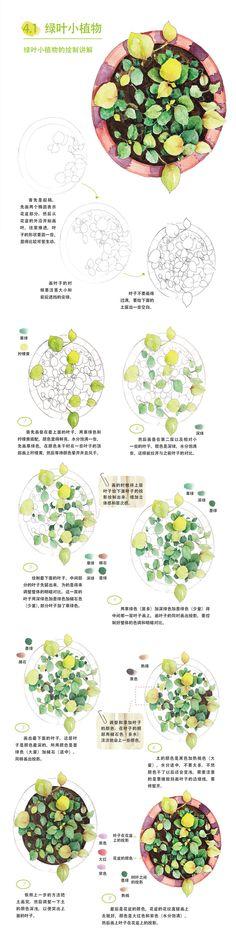 本案例摘自爱林文化主编、人民邮电出版社出版的《水彩绘森活》——绿叶小植物