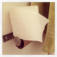 Anyone else wonder how remarkably cool it is that the diameter of a roll of toilet paper is just right for both the distance of the roll away from the wall AND to balance it on top when you really don't want to change the roll? ~Bon