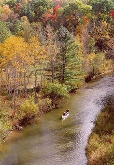 Canoeing Down the Manistee River