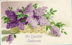 P7946 Easter Greeting Postcard Basket of Lilacs Written on not Mailed | eBay