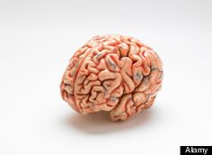Alzheimer's Disease Brain Markers Vary With Age