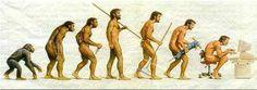 Resultado de imagen para human evolution timeline