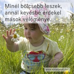 Stupid Memes, Funny Memes, Hungary, Budapest, Mindfulness, Humor, Quotes, Creative, Quotations