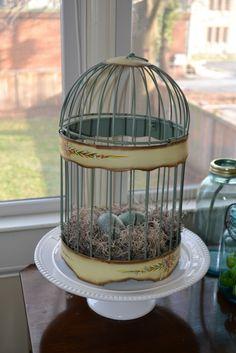 Love this beautiful bird cage