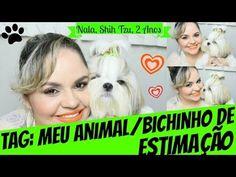 Tag: Meu Animal/Bichinho De Estimação (Nala, SHIH TZU, 2 Anos) - Lói C...