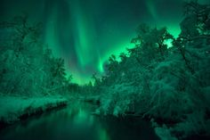 Sumo Waggle Adventure - Lomaas River, Skanland, Norway - by Arild Heitmann (Aurorae, Highly Commended)