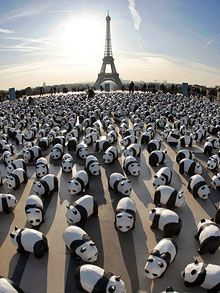 Are Obsessed With This Art Exhibit causing Global Panda-monium! Pandas in Paris. an installation of the WWF in Oct The 1600 paper pandas, installed by members of the WWF, represent each of the remaining pandas left in the wild. Amor Panda, Niedlicher Panda, Cute Panda, Chibi Panda, Tour Eiffel, Farm Animals, Cute Animals, Art Public, Instalation Art