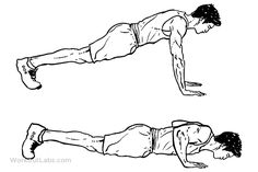 Push-ups / Pushups