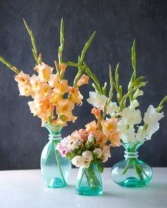 The Glorious Gladiolus | Simple centepiece DIY with Gladioli | Tulipina.com