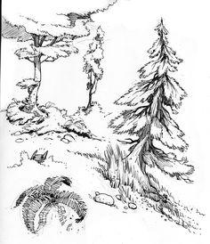 [trees_4.jpg]