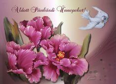 Pentecost, Floral, Flowers, Plants, Plant, Royal Icing Flowers, Flower, Flower, Florals